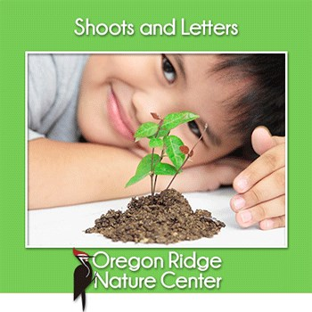 Shoots and Letters – How do plants grow! Poster