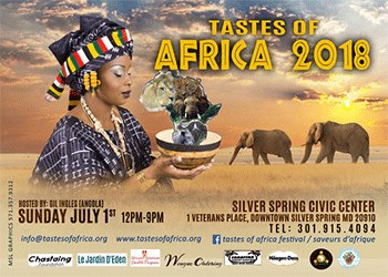 Tastes of Africa Poster