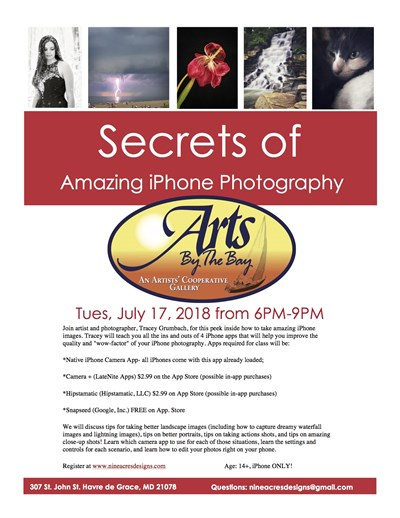 Secrets of iPhone Photography Poster