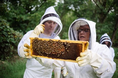 People holding up a honeycomb.