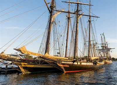 Tall ships at Chestertown's Downrigging Weekend