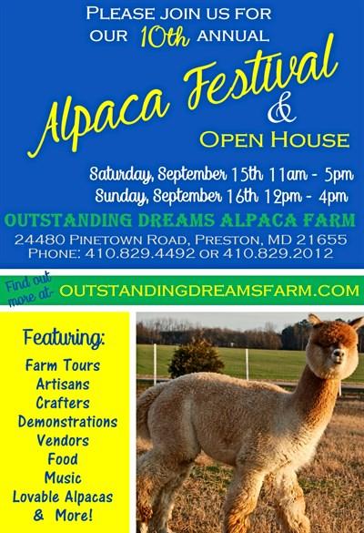 Alpaca Fall Festival at Outstanding Dreams Farm in Preston, MD