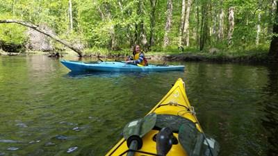 kayaking the choptank
