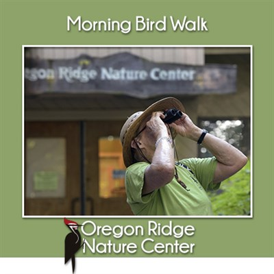 Morning Bird Walk