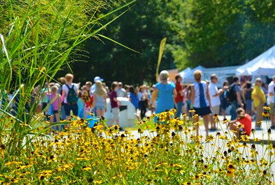 People enjoying Artsfest