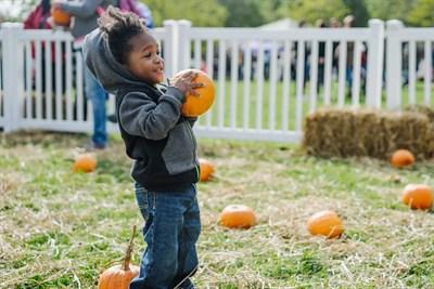 small child holding a pumpkin