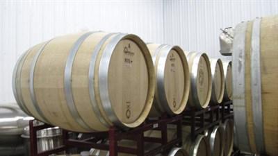 Barrels for Tasting