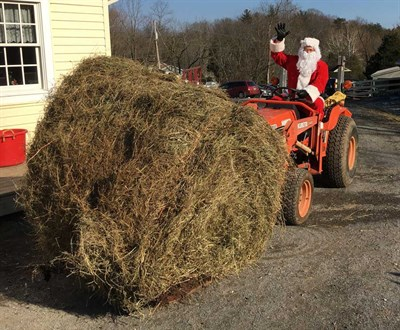 Santa bringing hay to the animals