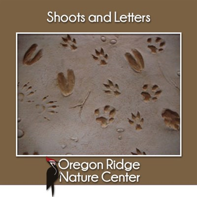 Shoots and Letters - Animal Tracks