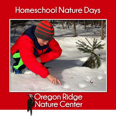 Homeschool Nature Days Poster