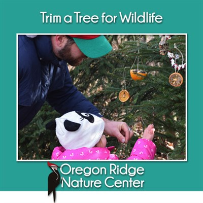Trim a Tree for Wildlife
