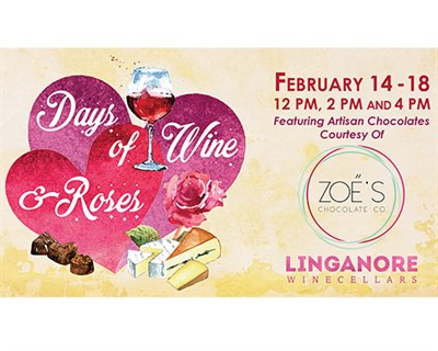 Days of Wine and Roses Poster