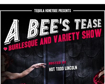 A Burlesque and Variety Show poster