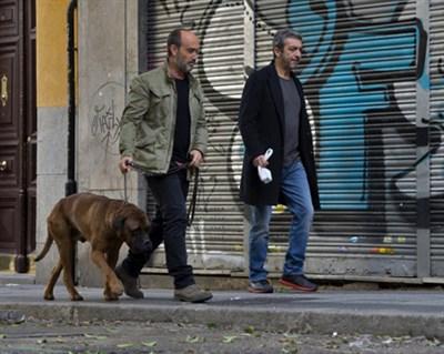 Two friends walking a dog