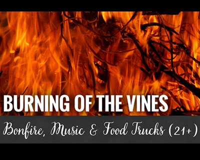 Burning of the Vines poster
