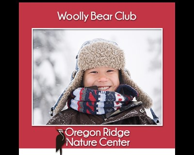 Woolly Bear Club poster