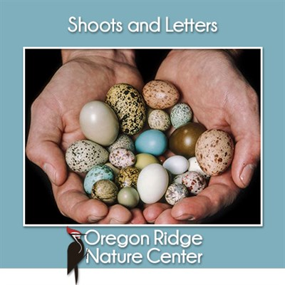 Shoots and Letters – Animals that Lay Eggs poster
