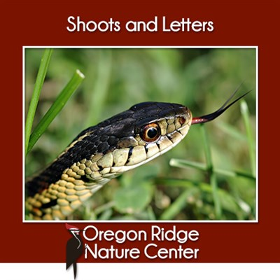 Shoots and Letters – Snakes poster