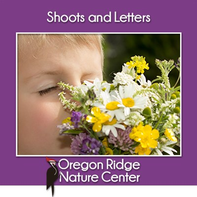 Shoots and Letters – Flowers poster