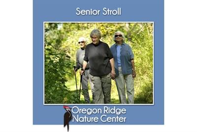 Senior Stroll poster