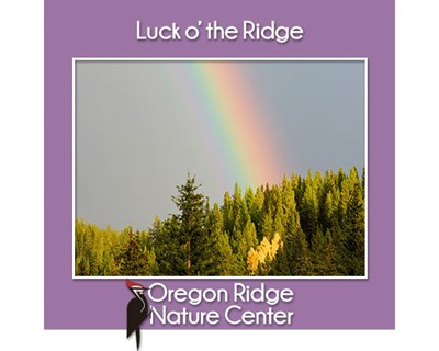 Luck o'the Ridge poster