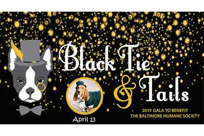 Black Tie and Tails Flier 2019