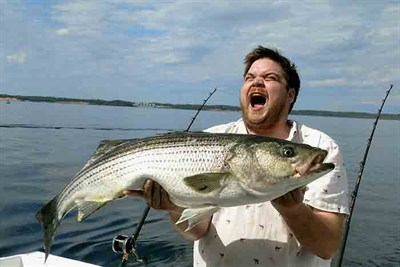 Great striped bass catch on the bay.