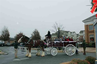 horse drawn carriage at the Olde Tyme Holiday event