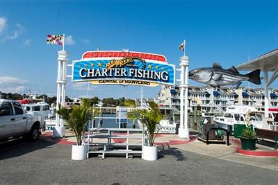 Charter fishing sign