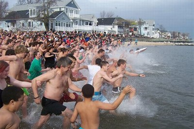 polar bear plungers take to the water