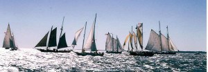 Schooner Race Watch