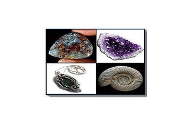 Treasures at the Gem, Mineral, Jewelry & Fossil Show
