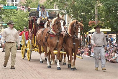 Horses with Carriage at the Towson Fourth of July Parade