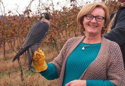 handler with a bird of prey
