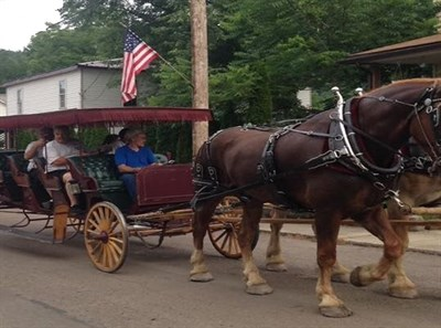 A Horse and Buggy take visitors for a ride