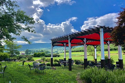 Catoctin Breeze Vineyard