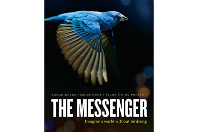 The Messenger flyer featuring a blue songbird in flight