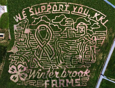 2018 Winterbrook Farms Corn Maze design