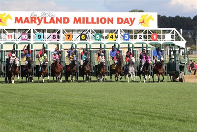 Maryland Million Day horse racing