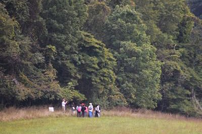 Group enjoying a Belmont Tree Hike