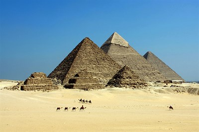 blue sky and camel with pyramids