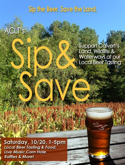 Sip & Save Graphic