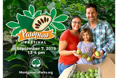 Family Fun at the Pawpaw Festival
