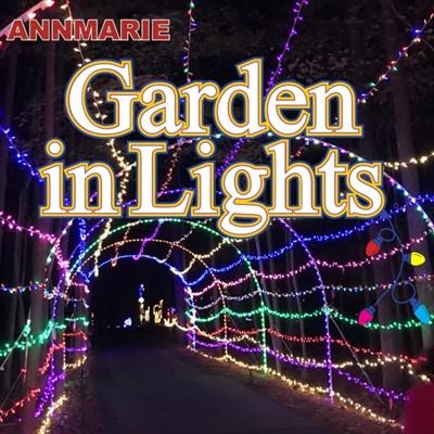 Annmarie Garden In Lights