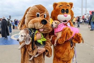 Pet Parade Participants