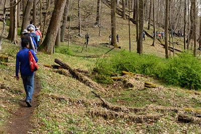 Hike to Rockburn Branch