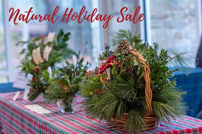 Natural Holiday Sale