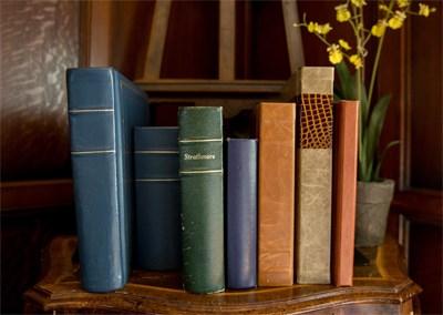 Books on a shelf.