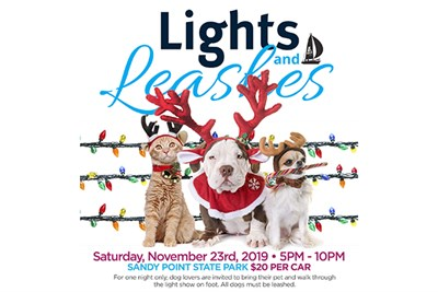 Lights and Leashes poster