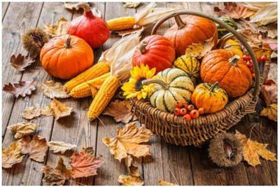 A Harvest of Fall Vegetables in a Basket
